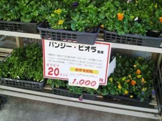 2012111815020000.jpg